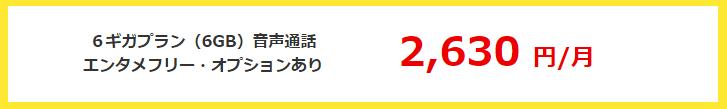 BIGLOBE SIMの6GB通話有りのYOUTUBE使い放題オプションありで月額2630円で使用可能