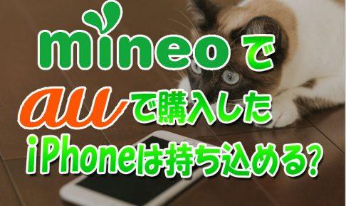mineoでauで購入したiPhoenは使える?