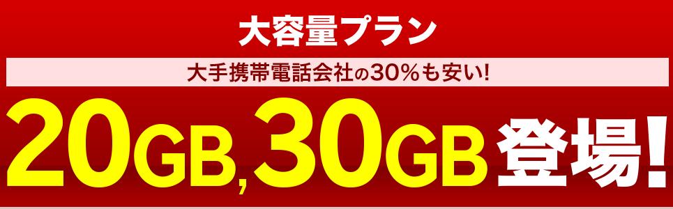 楽天モバイルの大容量プラン20GB&30Gb
