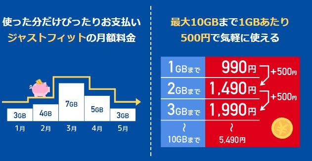 bモバイルSの990ジャストフィットSIM