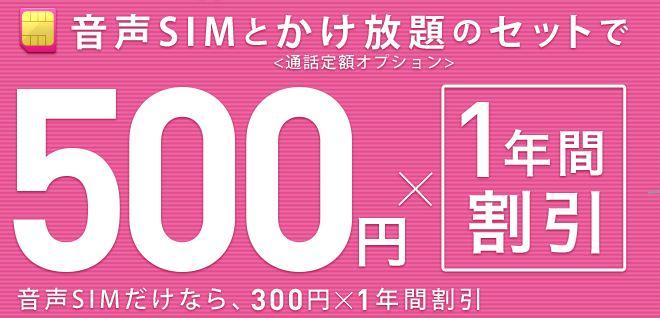 IIJmioWキャンペーンは月額500円割引が1年間