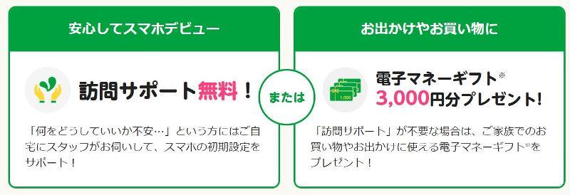 mineo敬老の日キャンペーンの2つの特典「訪問サービス無料」と「3000円分のギフト券」