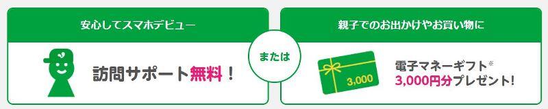 mineo親孝行キャンペーンで選べる2つの特典