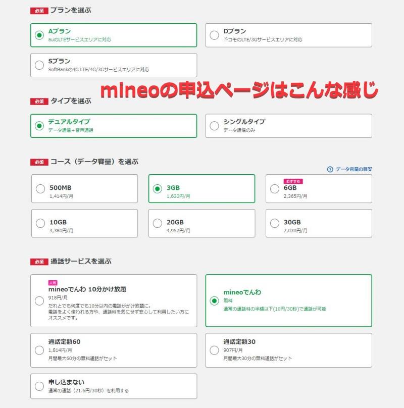 mineoの申込フォームの入力例